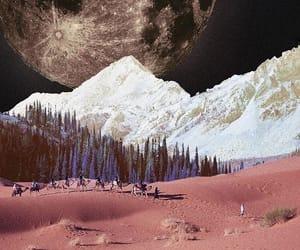 art, desert, and forest image