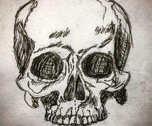 calavera, dibujo, and draw image
