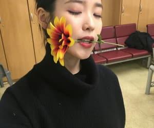 iu, kpop, and idol image