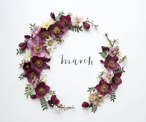 flowers, march, and text image