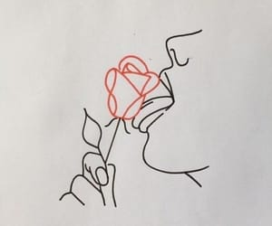 rose, drawing, and red image