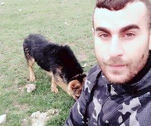dog, dz, and dzayar image