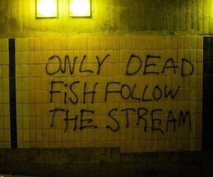 quotes, grunge, and fish image