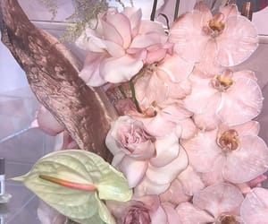 flowers, glossy, and pink image