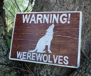 werewolf, warning, and aesthetic image