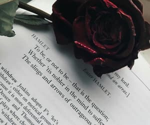 book, rose, and quotes image