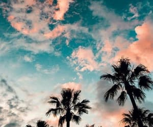 wallpaper, summer, and sunset image
