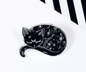 black, cat, and pins image