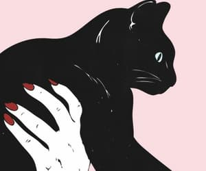cat, wallpaper, and pink image