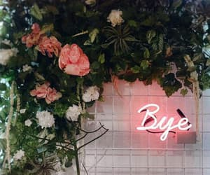 light, neon, and flowers image