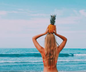 article, food, and beach image