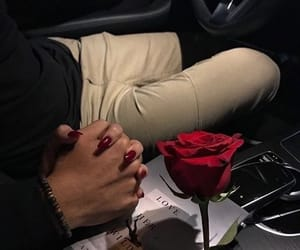 aesthetic, goals, and rose image