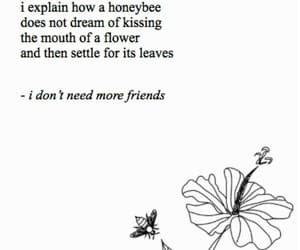 bee, flower, and poems image