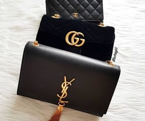 gucci and YSL image