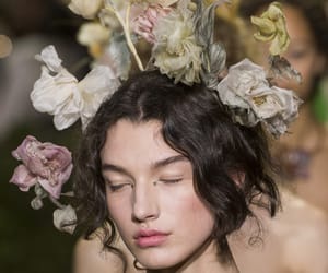 beauty, flower, and dior image