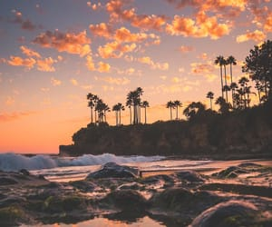 beach, palms, and place image