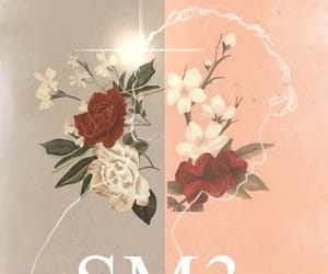 album, cover, and roses image