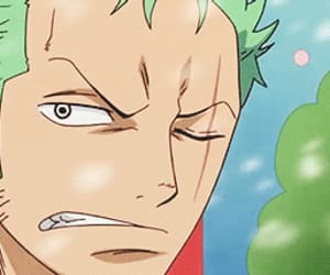 gif, one piece, and zoro image