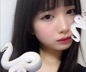 黒宮れい and 🐍 image