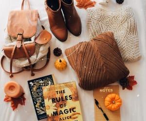 books and fall image
