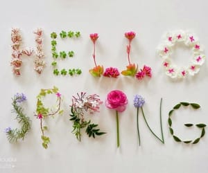 spring, flowers, and hello image
