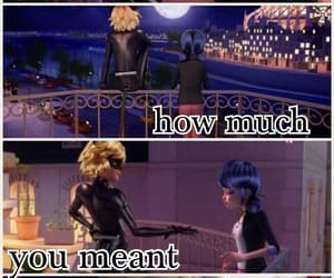 Chat Noir, quotes, and miraculous ladybug image