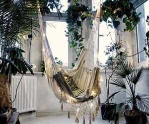 home, plants, and decor image