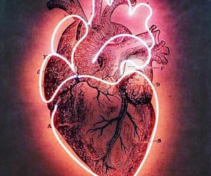 aesthetic, grunge, and heart image