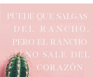 quotes, mexicana, and paisa image