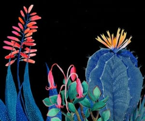art, cactus, and illustration image