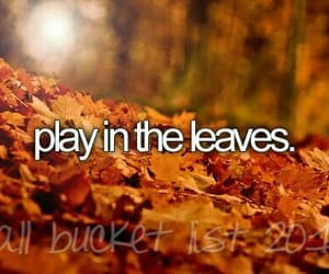 leaves, fall, and play image
