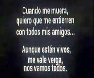 amigos, frases, and todos image