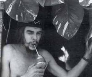 Che Guevara and mate tea image