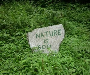 nature, green, and god image