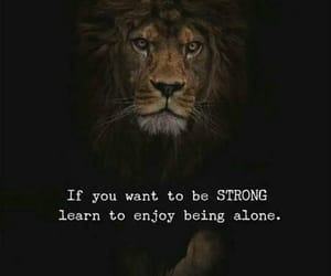 alone, learn, and lion image