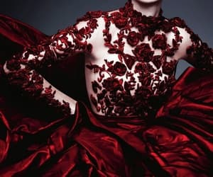 red, fashion, and rose image