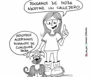 animals and frases image