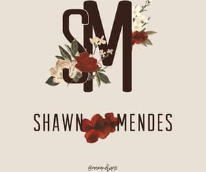shawn mendes, 💕, and 🎉 image