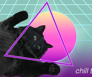 black cat, cat, and vaporwave image
