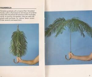 umbrella and plants image