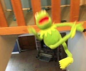 kermit, lol, and meme image