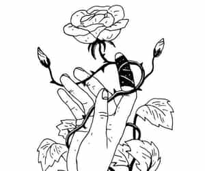 rose, art, and black and white image