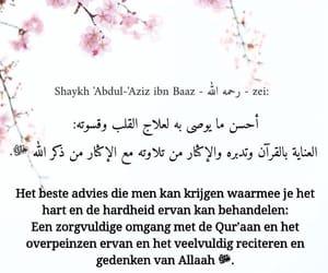 hart, Koran, and advies image