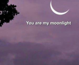 moonlight, moon, and wallpaper image