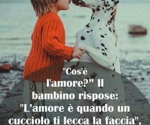amore, frasi, and phrases image