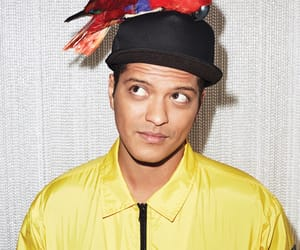 boy, bruno mars, and parrot image