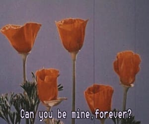 flowers, forever, and mine image