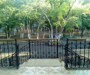 animal, park, and mérida yucatan image