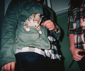 cat, grunge, and boy image