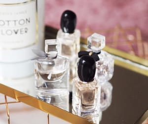 beauty, blogger, and fragrance image